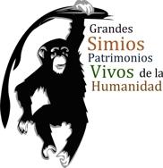 Patrimonio humanidad